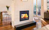 Supreme Duet See-Through Wood Burining Fireplace